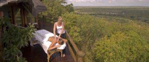 Krugerpark South Africa safari