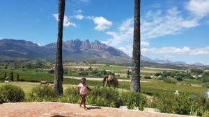 Wellington Wine Valley near Cape Town